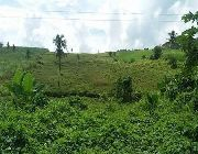 Lot for sale bogo city, yuta data data -- Land -- Bogo, Philippines