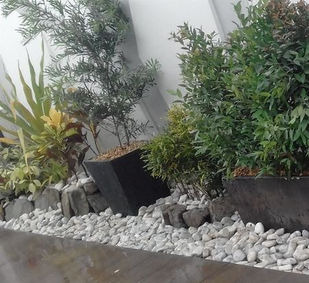 Gardening, landscaping, landscape, landscaper, garden, plants, trees, ornaments, pebbles -- Other Services Metro Manila, Philippines
