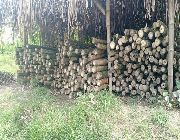 kawayan bamboo -- Home Tools & Accessories -- Batangas City, Philippines